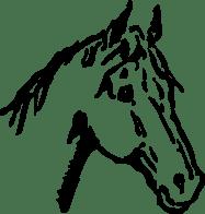 horse-47607_1280