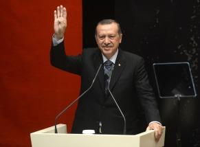 erdogan-2155938_1280
